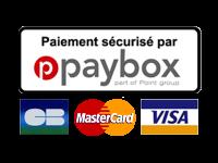 paiement sécurisé CB Visa Mastercard Paybox Verifone